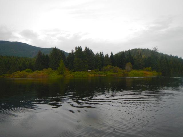 tashii paddle school