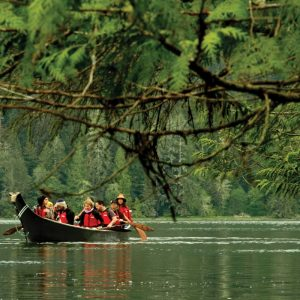 Tashii-Paddle-School-Canoe-Under-Cedar-Branch