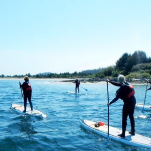 best paddle boarding