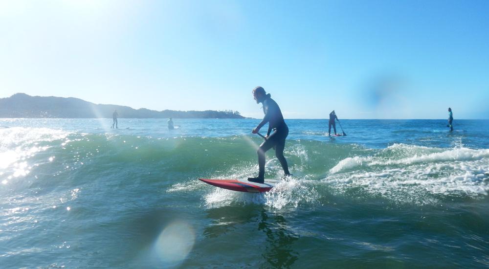 tofino sup surfing